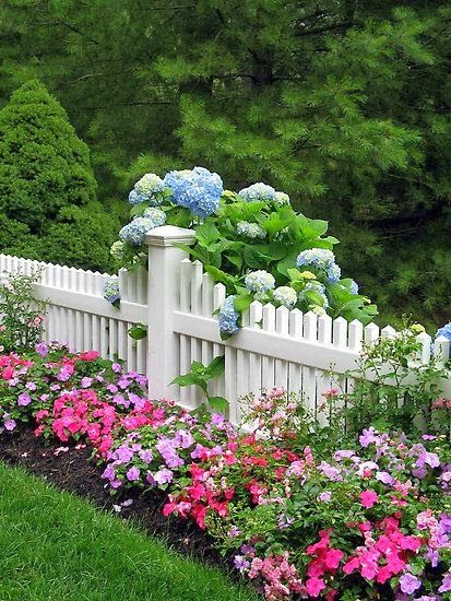 Picket fences lend an old-school charm to your cottage garden