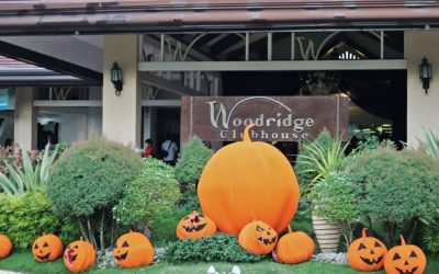 Masquerade Madness: Highlights From the Woodridge Park 2019 Halloween Party